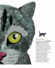 Глаза в глаза. Как животные видят мир / Стив Дженкинс